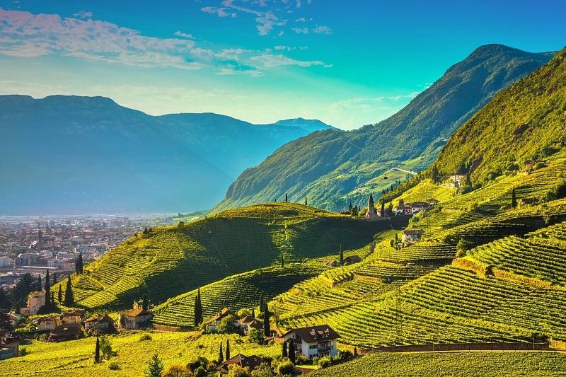 Route des vins du Trentino Alto Adige avec AlpAddict