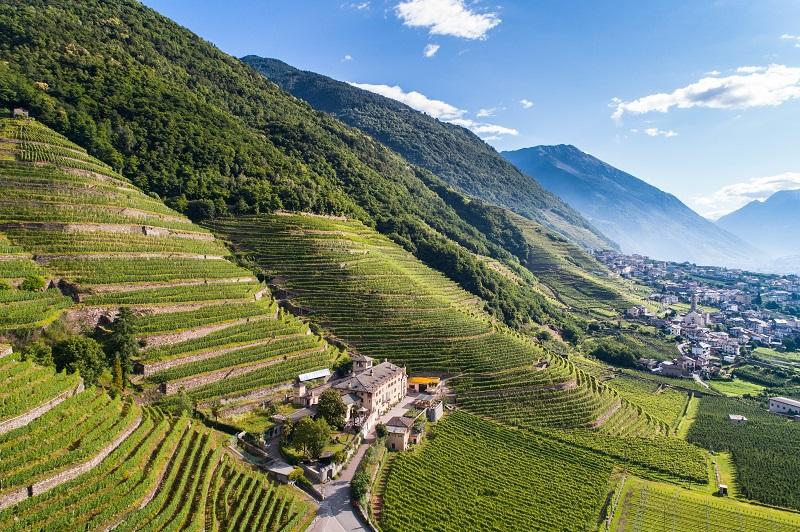 Routes de Vins en Lombardie avc AlpAddict