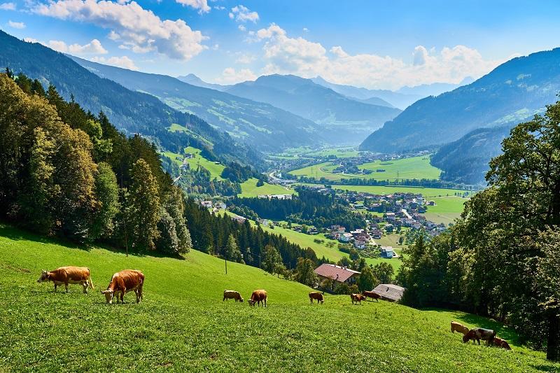 AlpAddict au Tyrol