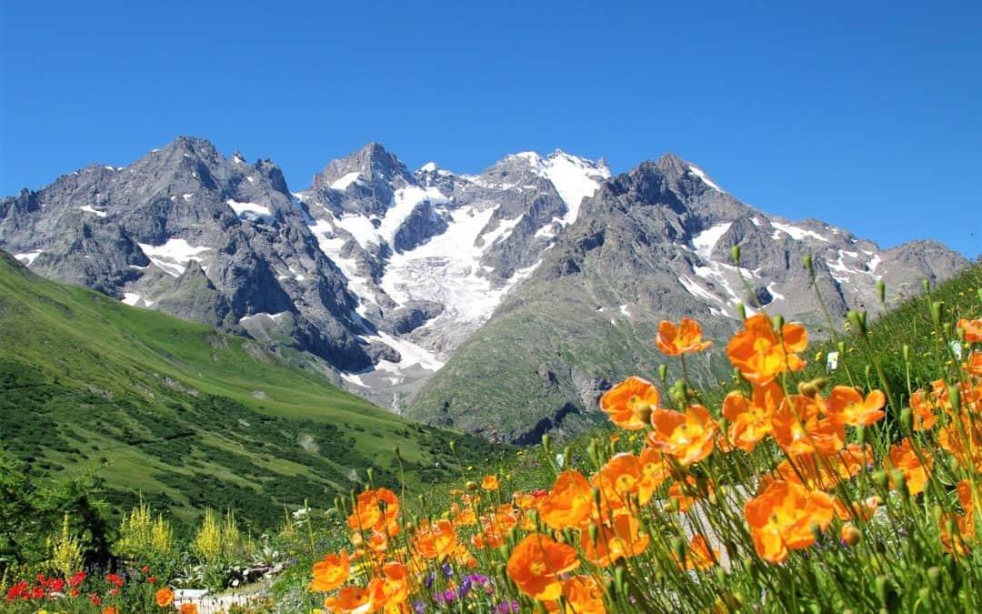 Découvrir les Hautes Alpes en été