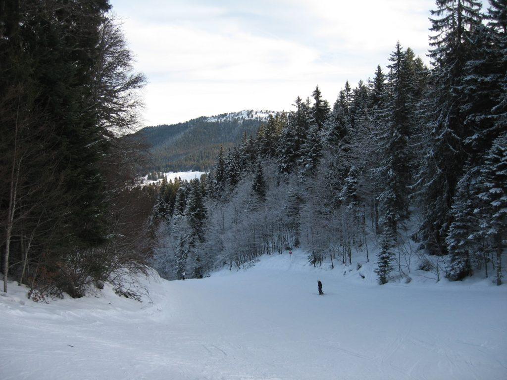Balade avec AlpAddict dans les forêts du Jura